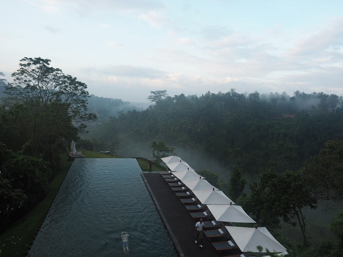 Alila Ubud Pool View