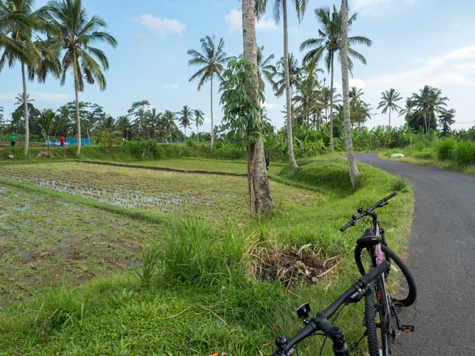 Padma Ubud Bike Ride