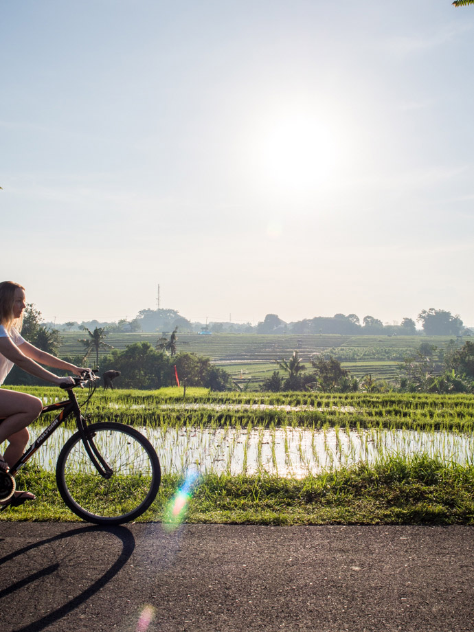How to get to the Canggu Rice Fields