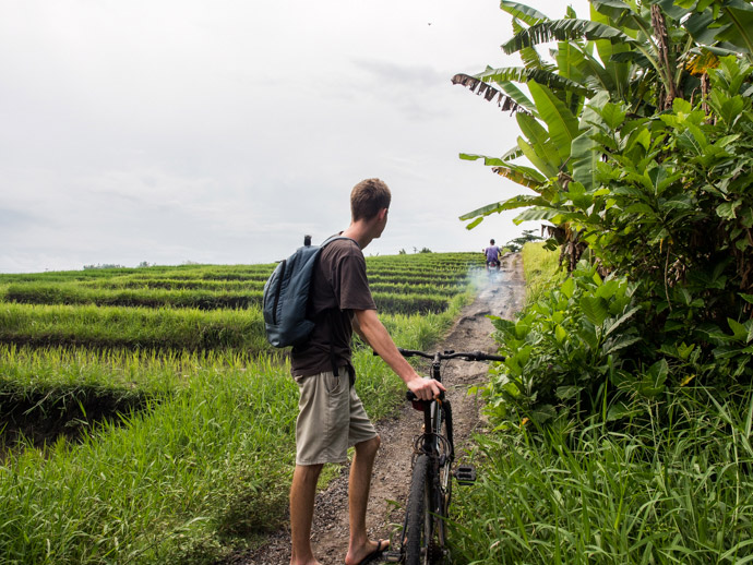 Where Are The Rice Fields In Canggu