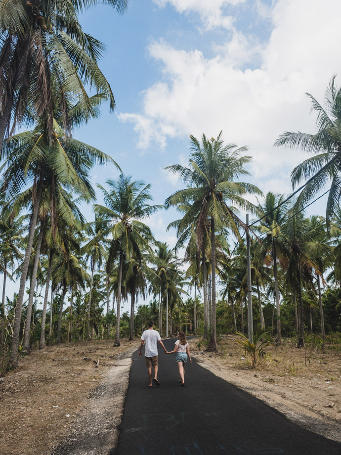 Road With Coconut Trees Near Crystal Bay Nusa Penida Bali